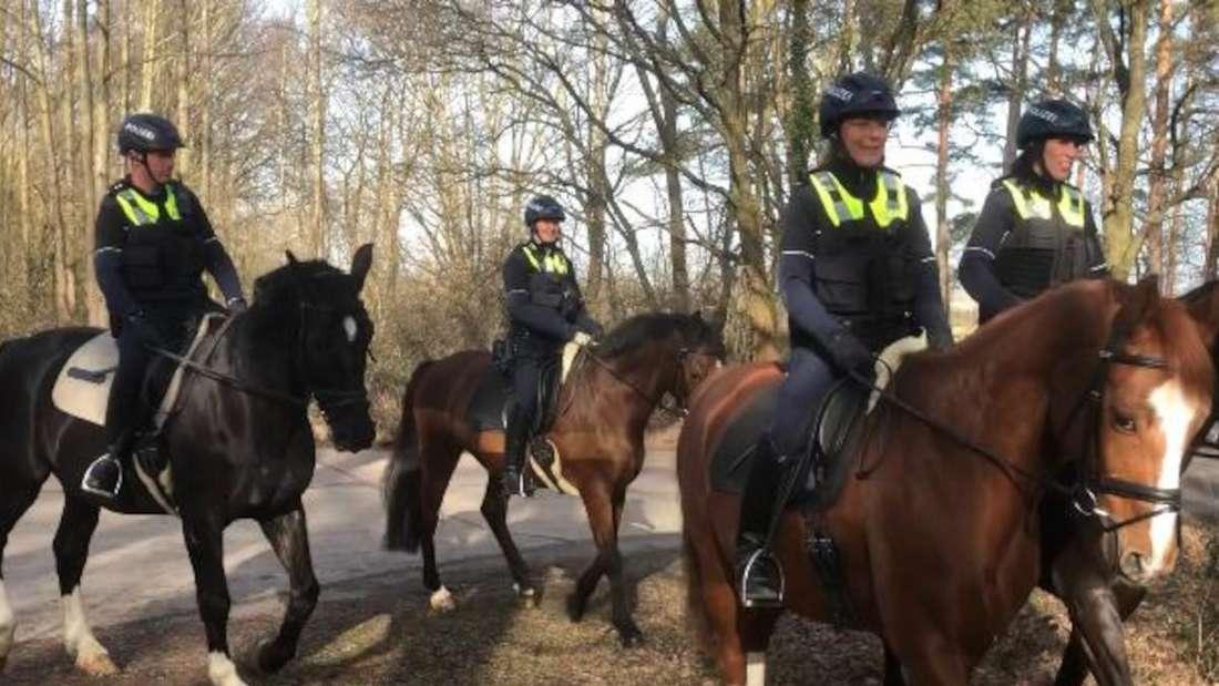 Die Polizei reitet auf Pferden durch den Billiger Wald.