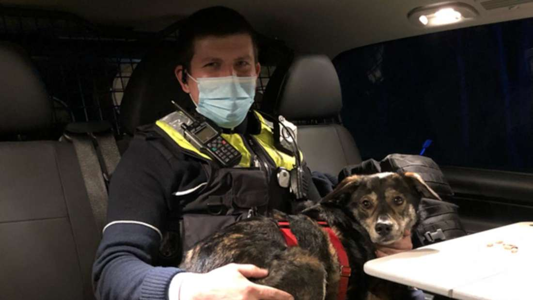 Ein Polizist hat einen Hund auf dem Schoß