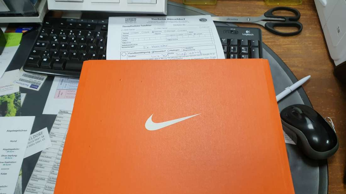 Orangefarbener Nike-Schuhkarton, in dem fünf Hamster in der U709 in Düsseldorf gefunden wurden