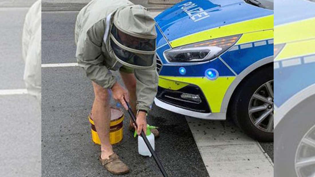 Ein Imker fegt vor einem Polizeiauto Bienen von einer Straße auf.