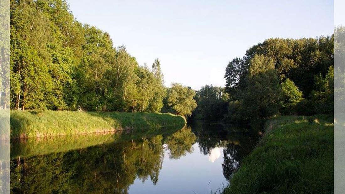 Ein kleiner Fluss und viel Natur.