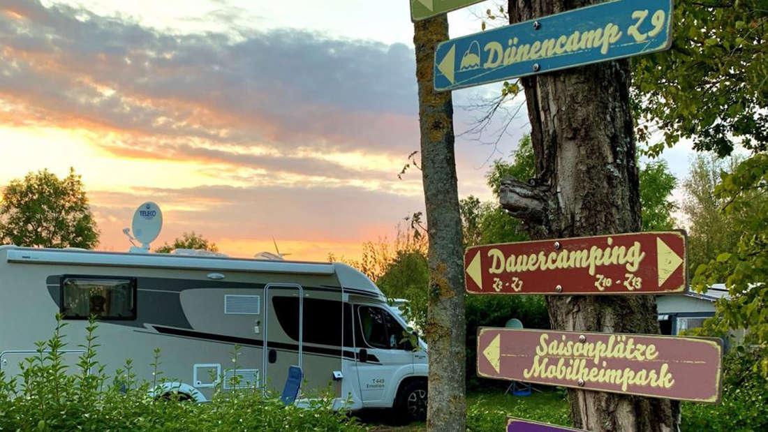 Ein Baum mit bunten Hinweisschildern. Im Hintergrund ist ein Campingwagen und einem See.