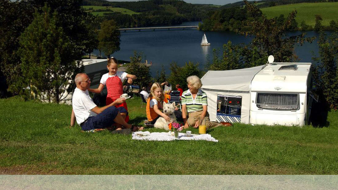 Vier Personen picknicken auf einer Wiese. im Hintergrund erkennt man einen See.