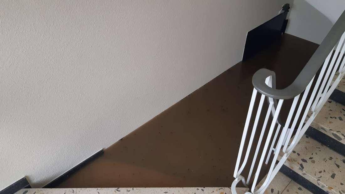 Eine Kellertreppe in einem Haus in der Ostpark-Siedlung in Düsseldorf-Grafenberg steht komplett unter Wasser.