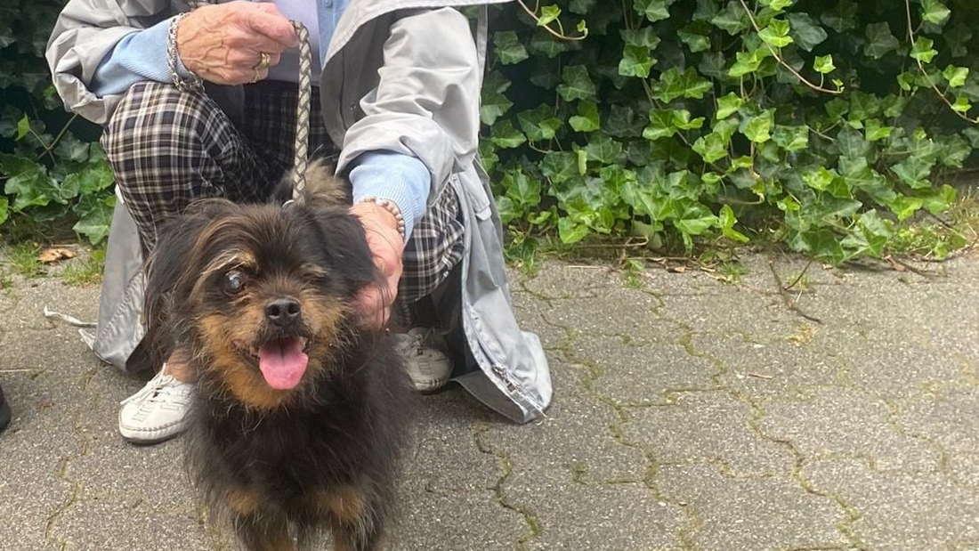 Rocky und sein neues Frauchen vor dem Tierheim Köln-Dellbrück.