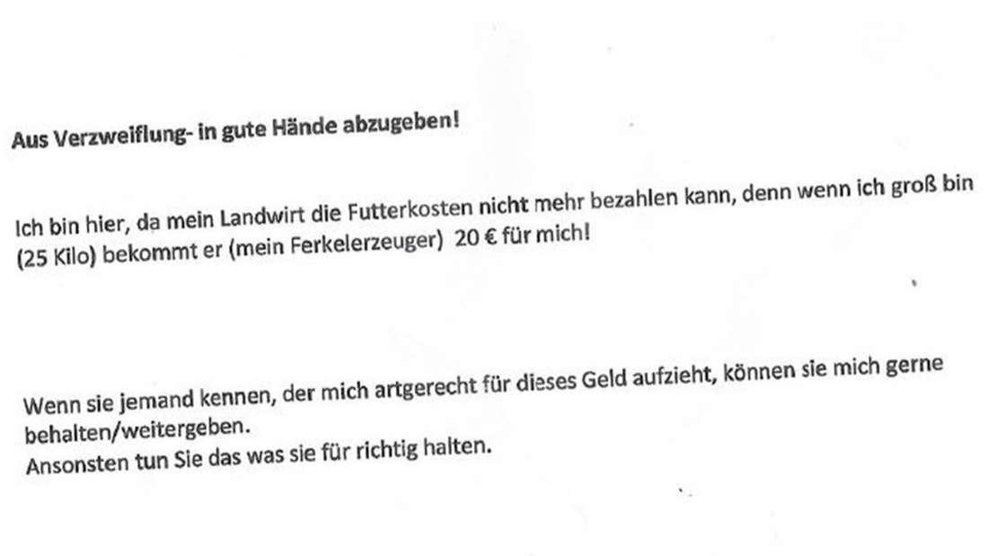 Dieses Schreiben lag laut Stadt Mülheim den ausgesetzten Ferkeln bei.
