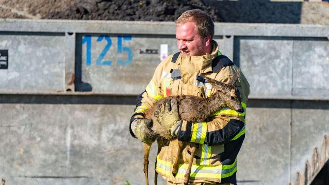 Ein Feuerwehrmann trägt ein Reh in seinen Armen.